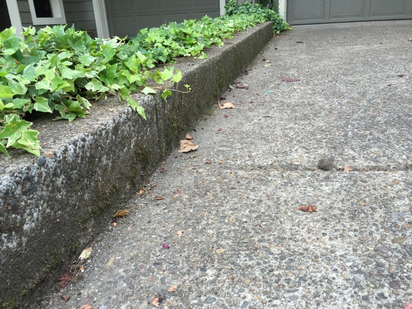 curb before cleaning
