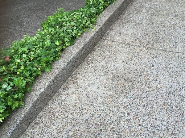 curb after cleaning