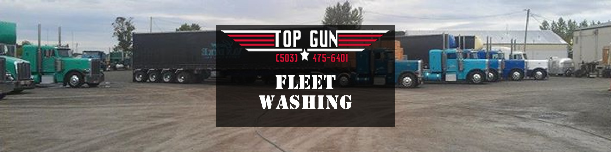 slide show image TG Fleet Washing B1